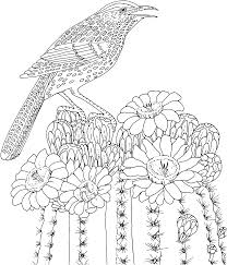Small Picture Bird Flower Coloring Pages Free Printable Coloring Coloring Pages