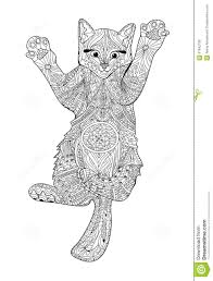 Funny Kitten Coloring Book For Adults