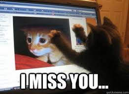 Long Distance Relationship cat memes | quickmeme via Relatably.com