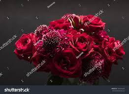 Scabiosa Floral Design Red Roses Scabiosa Floral Arrangement Dark Stock Photo Edit