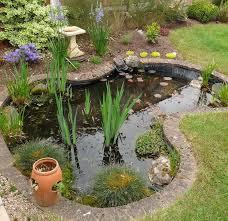 key pond species