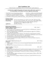 Fantastic Resume Programmer Ideas Documentation Template Example