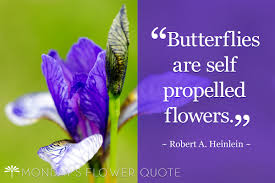 Purple Flower Quotes Flower Quote Butterflies Are Self Propelled Flowers