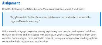 Sample Persuasive essay rubric  th grade Pinterest