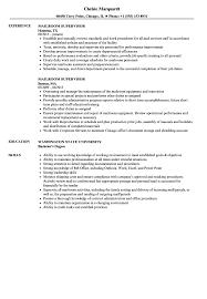 Mail Room Supervisor Resume Mailroom Supervisor Resume Samples Velvet Jobs 8