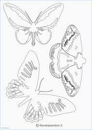 Immagini Di Farfalle Da Disegnare Nuovo Disegni Di Tatuaggi Facili