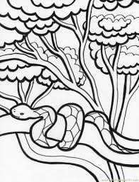Small Picture Snake in tree Coloring Page Free Snake Coloring Pages