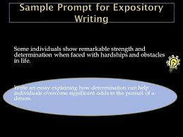 writing an expository essay ppt  48 sample