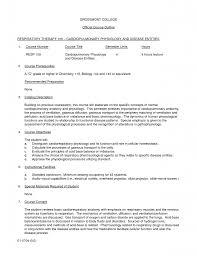 essay writing examples english twenty hueandi co essay writing examples english