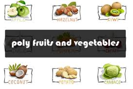 Svg (vector) graphics have begun to rise in popularity over png/jpeg. 1 Vegitables Designs Graphics