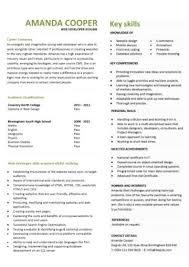 Technical Skills Cv Web Developer Technical Skills Resume Topgamers Xyz