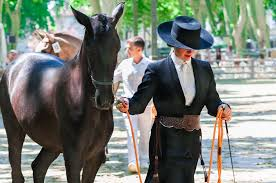 jerez horse fair feria del caballo