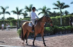 WEF photo | Equestrian Amino
