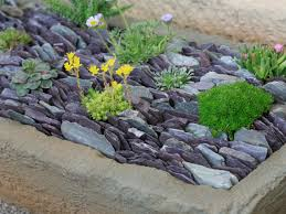 Succulent-Filled Slate Trough