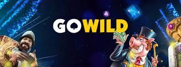 Wild Play
