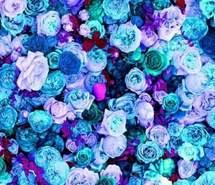 blue flowers background tumblr. Unique Background Blue Blue Flowers Flower Pink Pink Purple Inside Blue Flowers Background Tumblr B