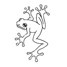 Small Picture 25 Delightful Frog Coloring Pages For Your Little Ones