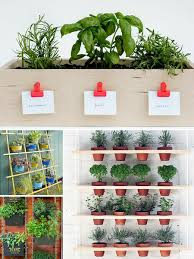 Small Picture Roundup 10 More Small Space Herb Garden Ideas Curbly