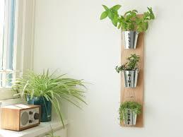 indoor wall herb garden