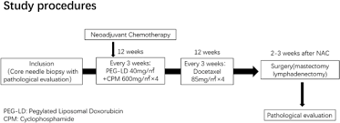 pegylated liposomal doxorubicin plus