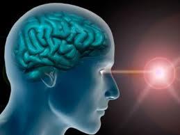 20 curiosidades sobre el cerebro humano que te sorprenderán - Sintonizado  para el lenguaje