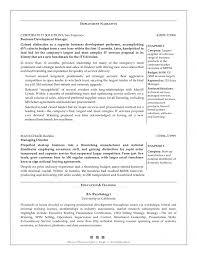 Business Development Manager Resume Format Executive Objective Pdf