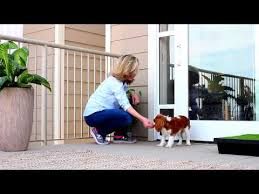 sliding door inserts are an excellent way to see if a pet door is right for your pet and your lifestyle because there s no cutting there s no commitment