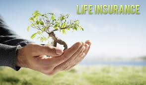Get A Life Insurance Quote Online