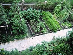 Small Picture Home Vegetable Garden Design Markcastroco