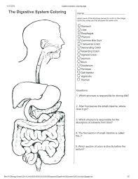 Human Body Systems Pdf Format – Takahiro.info