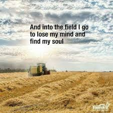 Pin By Donna Marshall On Country And Farming Scenes Pinterest Awesome Farming Quotes