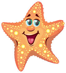 Image result for starfish clipart