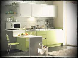 contemporary kitchen office nyc. Ikea Modern Kitchen. Small Kitchen Ideas Captivating With Green Cabinet And Oven Ovenikea Contemporary Office Nyc