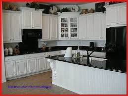 Should I Paint My Kitchen Cabinets White Best Ideas