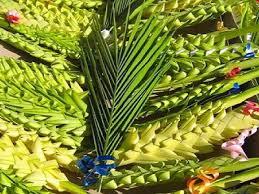 Risultati immagini per immagini domenica delle Palme