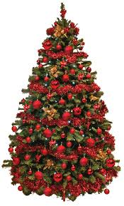 Need To Order An Office Christmas Tree Shipshape Cleaning