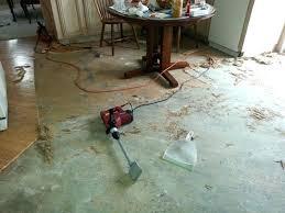 behr flooring adhesive remover outdoor concrete