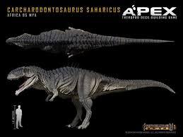 carcharodontosaurus size carcharodontosaurus vs tyrannosaurus dinosaurs forum