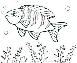 Betta Fish Coloring Page Fish Coloring Pages Free Coloring One Fish