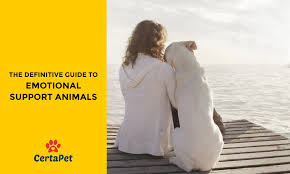 Support And Guide 2018 Comprehensive Accurate Animal Emotional 7dvwq7