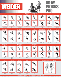 Multi Station Home Gym Exercise Chart Weider Ultimate Body Works Exercise Chart Pdf