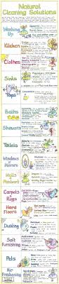Liz Cook Natural Cleaning Solutions Chart