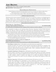 Resume Examples For Human Resources Position Examples Of Human Resources Resumes Awesome Human Resources Resume 19