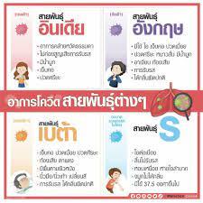 เช็กลักษณะโควิด 4 สายพันธุ์หลักในไทย ถ้าติดเชื้ออาการเป็นอย่างไร