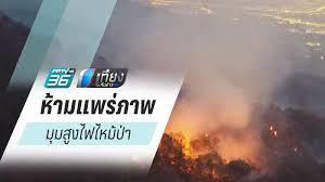 ไฟไหม้ป่า : PPTVHD36