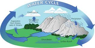 cycle essay water cycle essay