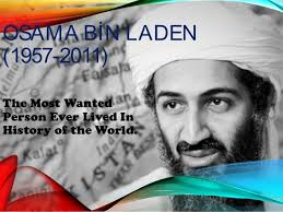 osama bin laden essay osama bin laden essay gxart osama bin  osama bin laden essay gxart orgessay on osama bin laden bminsuranceagency comessay on team communication