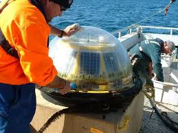 Marine Survey Pacific7 Provides Workboats For Seismic And