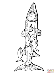 Small Picture Barracuda and Remora Fishes coloring page Free Printable