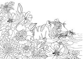 Small Picture nature coloring page 100 images leaf nature coloring page for